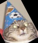 :wizardcat:
